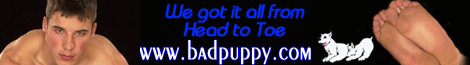 Badpuppy.com