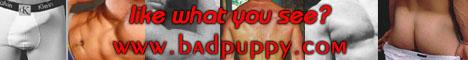 Badpuppy.com